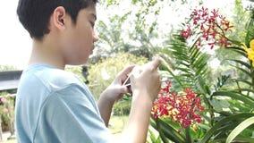 Le gar?on asiatique heureux d'enfant prennent une photo avec la belle fleur d'orchid?e dans le jardin banque de vidéos