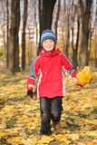 Le garçon fait une promenade en stationnement en automne Photo libre de droits