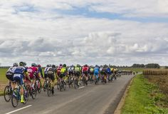 The Peloton - Paris-Tours 2017 Royalty Free Stock Image