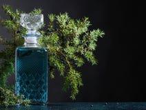 Le genièvre bleu dans le décanteur en cristal et le genévrier s'embranchent avec des baies photos stock
