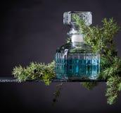Le genièvre bleu dans le décanteur en cristal et le genévrier s'embranchent avec des baies photographie stock