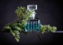 Le genièvre bleu dans le décanteur en cristal et le genévrier s'embranchent avec des baies image libre de droits