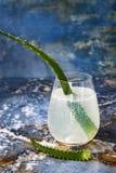 Le genièvre et le tonique en bon état de scintillement de concombre sifflent avec l'aloès Vera sur la table de marbre Copiez l'es image libre de droits