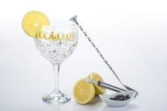 Le genièvre et le tonique parfaits avec un citron tordent image stock