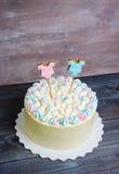 Le genre indiquent le gâteau avec la guimauve et le pain d'épice Photographie stock
