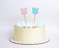 Le genre indiquent le gâteau avec la guimauve et le pain d'épice Photographie stock libre de droits