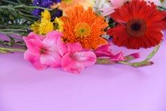 Le gerbera de belle fleur des fleurs et du ressort colorés de glaïeul décorent le fond rose image stock