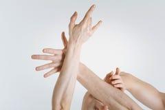 Le ginnaste delicate passa l'espressione dell'eleganza nello studio Fotografie Stock Libere da Diritti