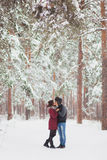 Le giovani coppie felici in inverno parcheggiano avere divertimento Immagini Stock