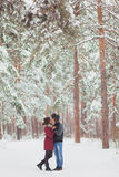 Le giovani coppie felici in inverno parcheggiano avere divertimento Famiglia all'aperto amore, giorno di S. Valentino Fotografia Stock Libera da Diritti