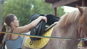 Le giovani donne mette una sella su un cavallo all'aperto all'estate video d archivio
