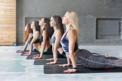 Le giovani donne nell'yoga classificano, allungamento di posa della cobra Fotografia Stock Libera da Diritti