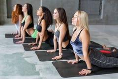 Le giovani donne nell'yoga classificano, allungamento di posa della cobra Fotografia Stock
