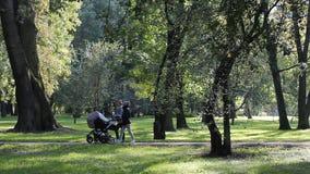 Le giovani madri con le carrozzine stanno camminando lungo il parco soleggiato dell'estate archivi video