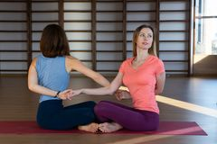 Le giovani ragazze attraenti di sport stanno facendo insieme l'yoga addestramento del gruppo immagine stock libera da diritti