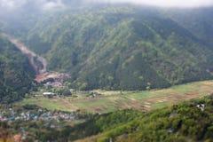 Le gisement de riz dans la vallée Photographie stock