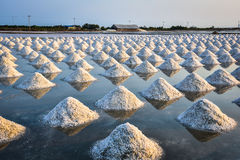 Le gisement de sel Image stock