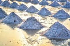 Le gisement de sel Photos libres de droits