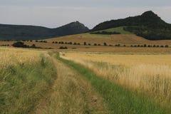 le gisement tchèque de la terre de campagne a labouré la république rurale Image libre de droits