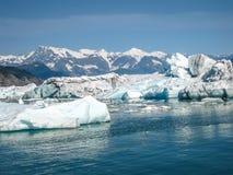 Le glacier rencontre la mer Image libre de droits