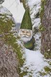 Le Gnome dans l'arbre avec le chapeau et la neige verts a couvert des branches Images libres de droits