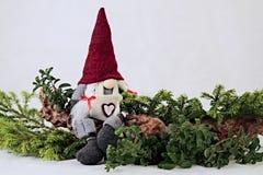 Le Gnome se repose sur une petite branche Photos libres de droits