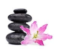Le gocce di acqua sulle pietre nere della stazione termale con il giglio fioriscono Fotografia Stock