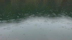 Le gocce di pioggia cadono sulla superficie dell'acqua di un lago della montagna I cerchi dalle grandi gocce di pioggia spargono  archivi video