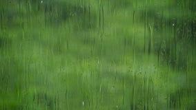 Le gocce di pioggia scorrono giù la superficie del vetro contro i verdi succosi archivi video
