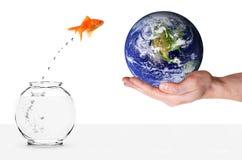 Le Goldfish sautant dans la terre de planète photos libres de droits