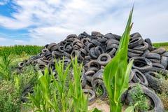 Le gomme di automobile rotte hanno accatastato fino ad una montagna in un campo di grano Immagine Stock Libera da Diritti