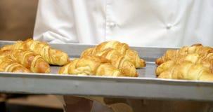 Le gourmet de cuisinier fait cuire des croissants banque de vidéos