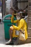 Le gourou indien prend un reste images stock