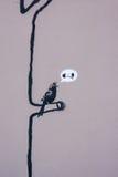 Le graffiti de Banksy Image stock