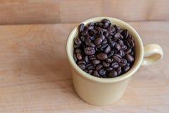 Le grain de café rôti a rempli tasse dans la lumière naturelle photos libres de droits