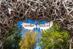 Le grand andouiller d'élans arque la courbe au-dessus de Jackson Hole, Wyoming Images stock