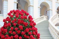 Le grand beau bouquet des roses rouges s'approchent de l'escalier. Image stock