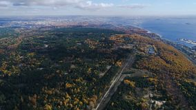 Le grand bois de vue aérienne imagée a croisé par la voie au lac banque de vidéos