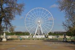 Le grand DES Tuileries (Ferris Wheel) de Roue à Paris, France Photo libre de droits