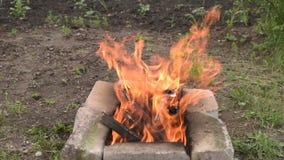 Le grand feu pendant l'été banque de vidéos