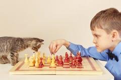 Le grand maître de débutant avec le chaton espiègle joue aux échecs image libre de droits