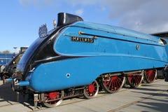 Le grand train sourcilleux Mallard de vapeur. Photos stock