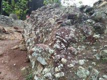 Le grandi rocce hanno sopravvissuto vicino alla foresta fotografie stock