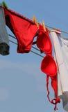Le grands soutien-gorge et culottes rouges ont traîné pour sécher au soleil dehors photos libres de droits