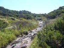 Le granit bascule avec la végétation méditerranéenne, vallée de lune, della Luna, Testa de capo, Santa Teresa Gallura, Italie de  image stock
