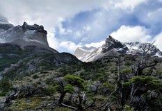 Le granit couronné de neige fait une pointe au-dessus des branches d'arbre nues en parc national de Torres del Paine, Patagonia C photo libre de droits