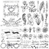 Le griffonnage tourbillonne, les rubans, élément floral de décor pour Photographie stock libre de droits