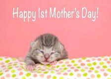 Le gris minuscule a dépouillé le texte heureux de jour du ` s de mère de chaton nouveau-né tigré Image stock