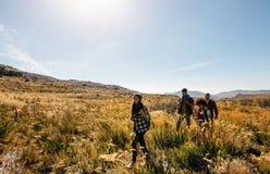 Le groupe d'amis trimardent en montagne Photographie stock