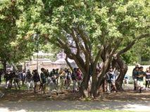 Le groupe d'enfants d'école explorant la La Brea Tar Pits et le musée, Los Angeles, la Californie, vers peut 2017 Image libre de droits